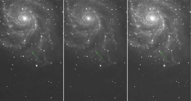 M101 Supernova and the Cosmic Distance Ladder
