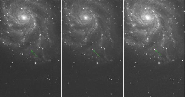 Supernova in M101